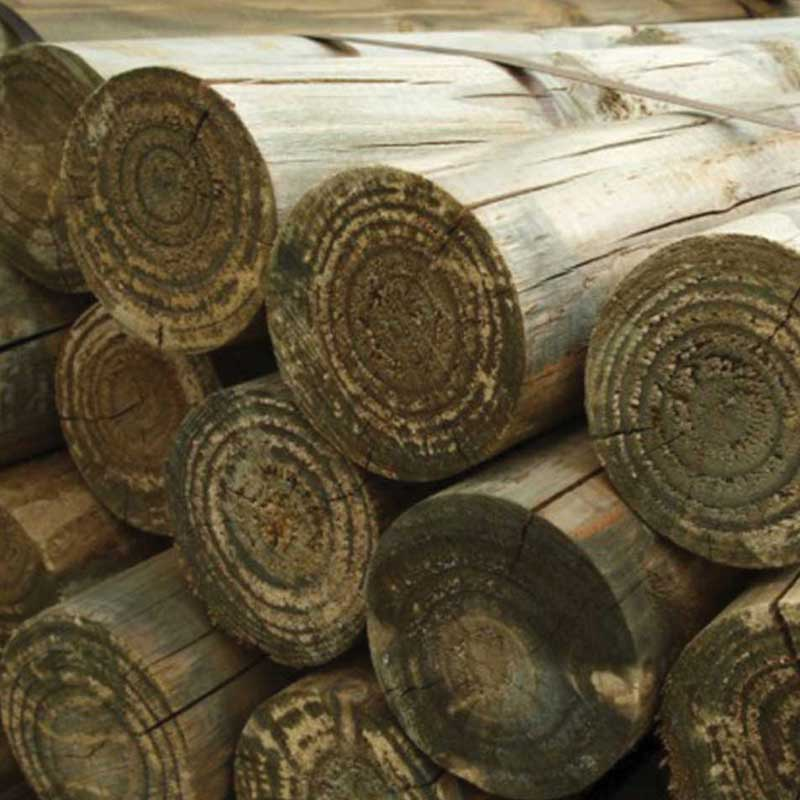 100mm-round-timber-poles-posts-Dorchester-Weymouth-Dorset.jpg